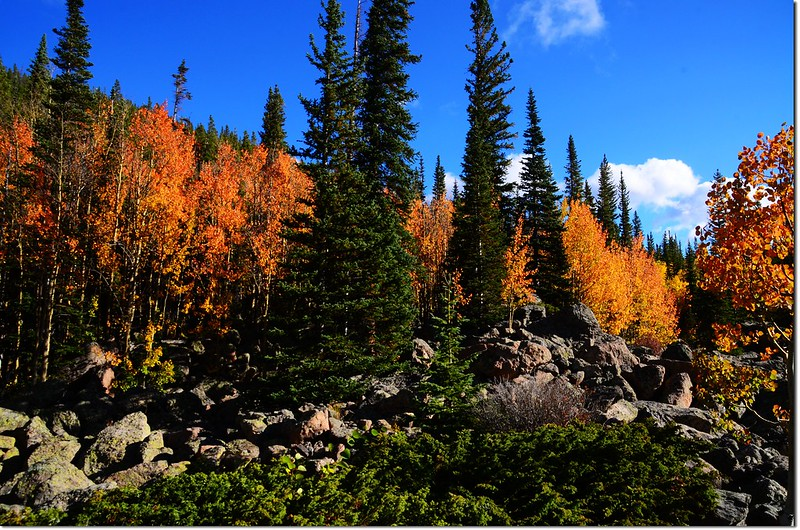 2015 Rockies in Fall, Bear Lake Area (1)