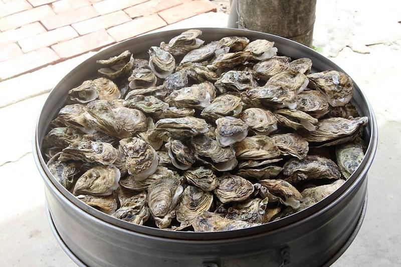 嘉義東石漁村體驗小旅行15