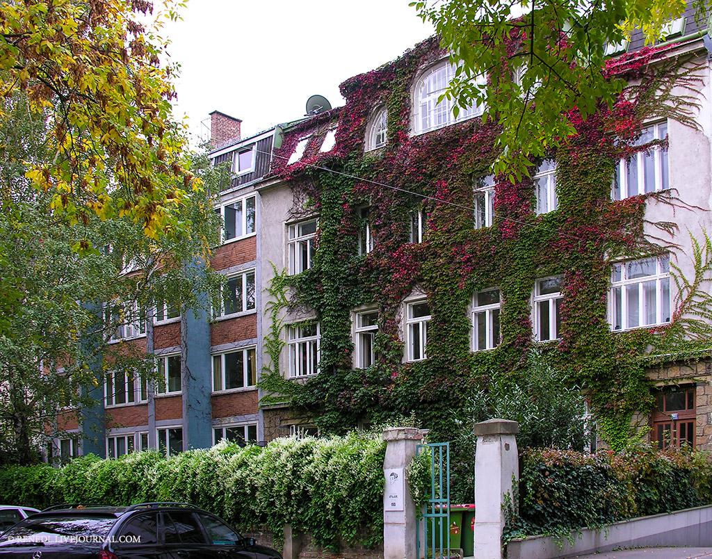 herbstliche Wien Rene N 13