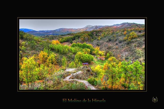 2015_10_18_Hayedo_Montejo_113