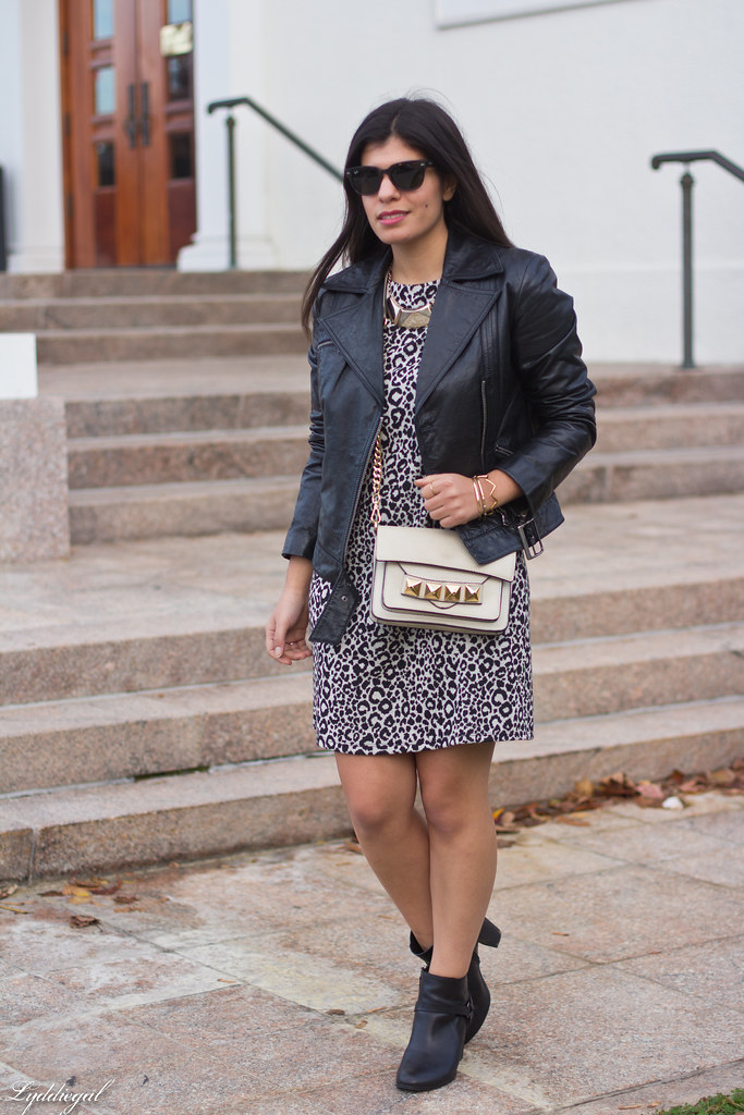 leopard dress, leather moto jacket, studded bag-4.jpg