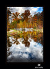 October Reflection by Jim Crotty