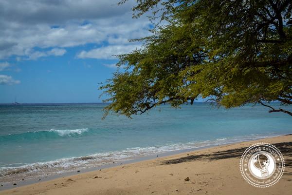 Empty Beach Maui