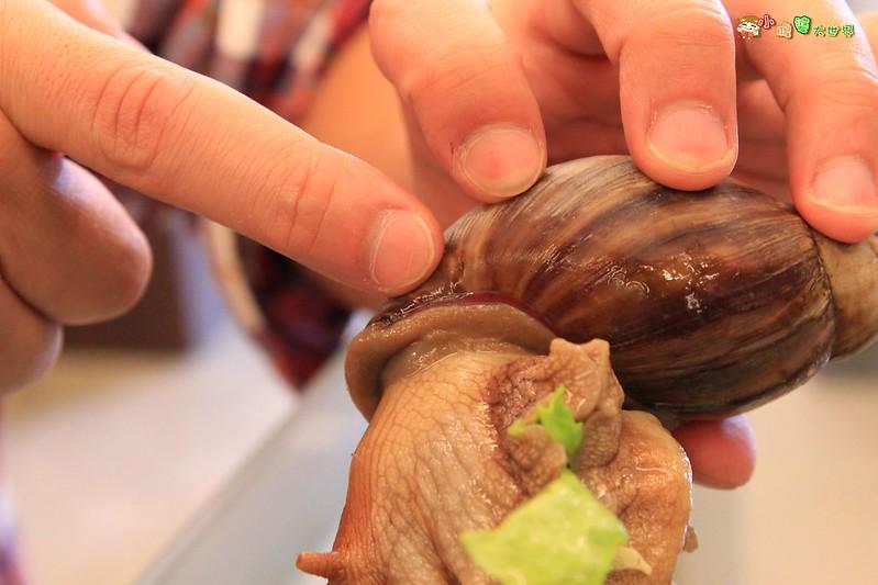 小品蝸牛觀光農場五 003