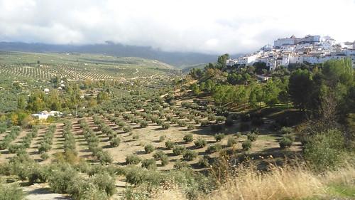 Quesada, Andalucia, España/ Spain