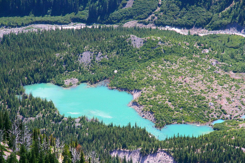 IMG_8812 Sunrise Rim Trail, Mount Rainier National Park