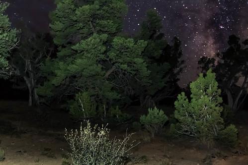 sky night stars outdoor milkyway