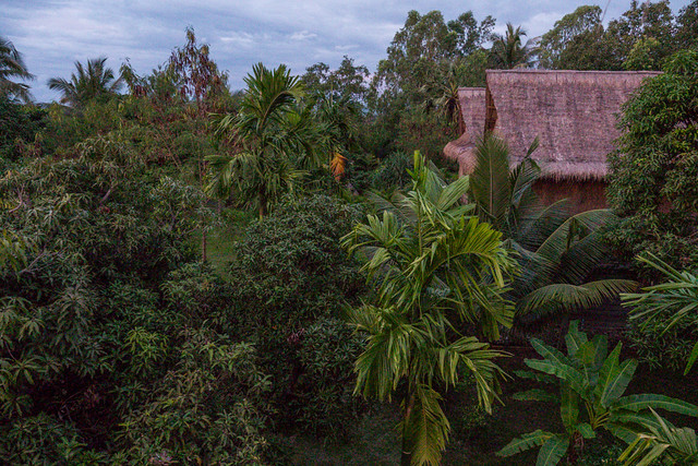 Ganesha Hostel in Kampot, Cambodia Budget Guide to Cambodia | Tips on how to do Cambodia on the cheap | How to travel Cambodia cheaply | Cambodia on a budget | 2 weeks in Cambodia