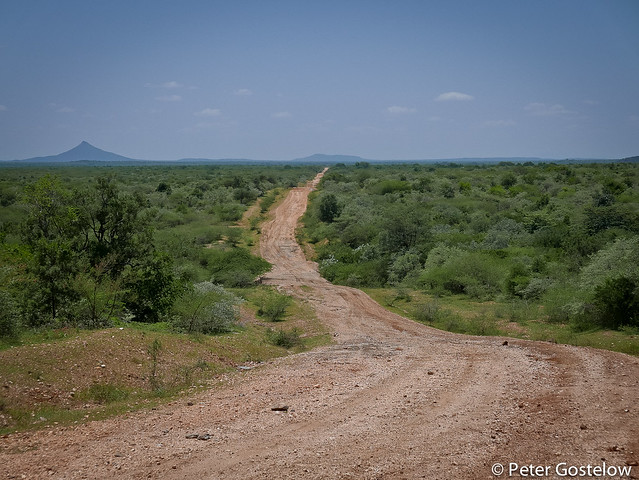 Road from Kapoeta to Kenya border
