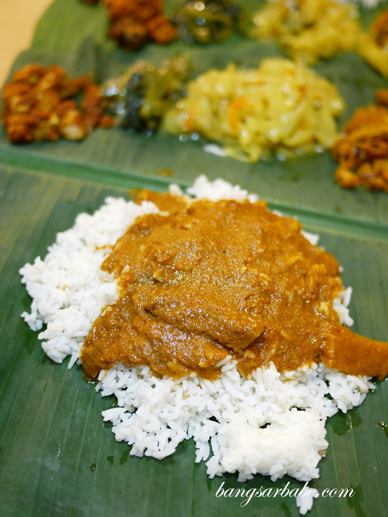 Rice with fish & chicken curry