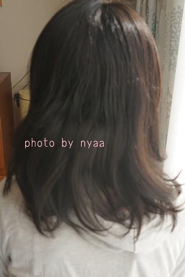 blackshampoo1022009