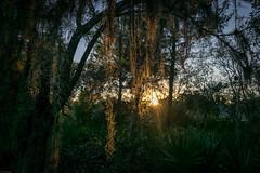 Shadow Bay Park, Orlando