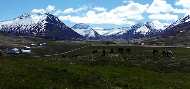 Islandia - Península de Trollaskagi