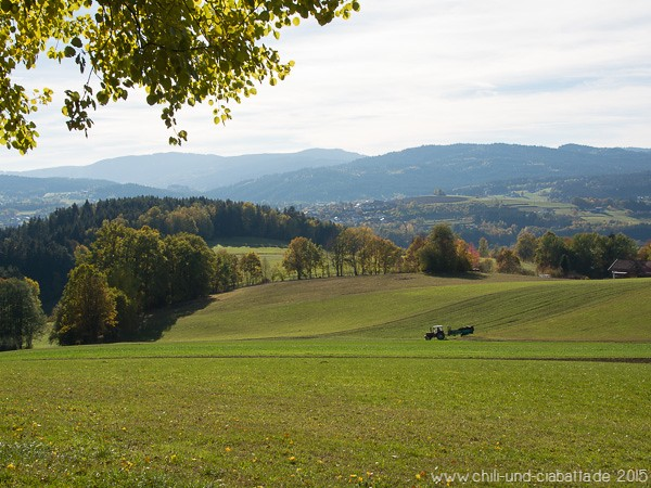 Wanderweg 8 Viechtach-Pirka