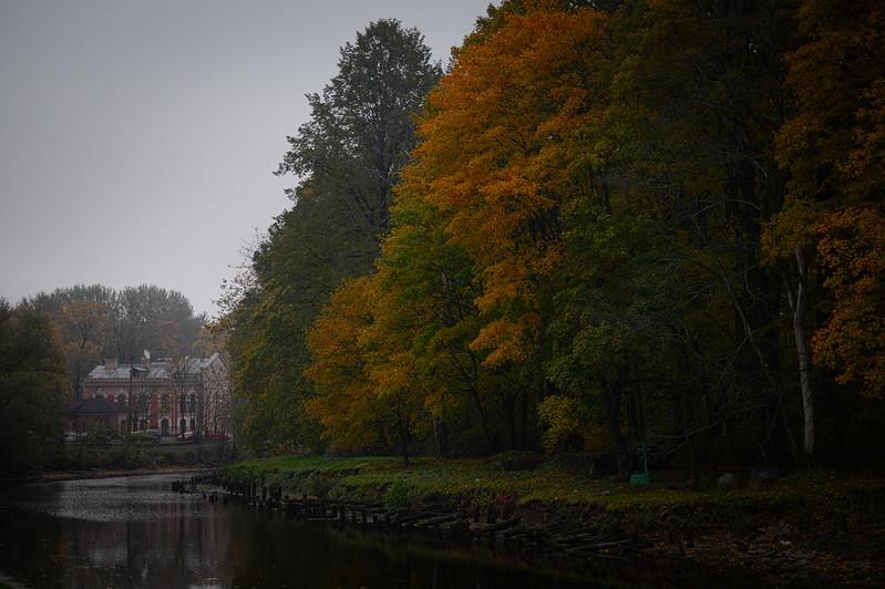 Smolenka in October Fog