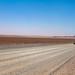 desert by Paul Keller