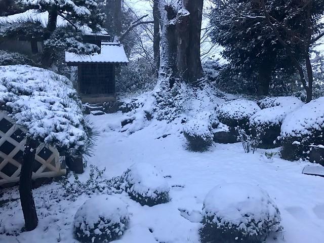 2016.11.24 初雪