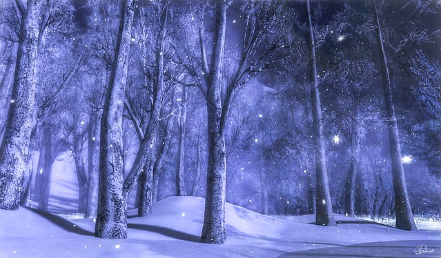 Winter's Chill @ Telrunya