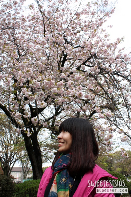 japan tokyo trip ueno park 32