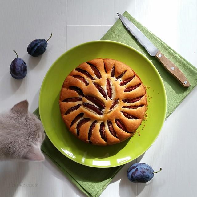 пирог с утопленными сливами 2