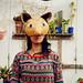 Danza fox gurises house- córdoba-Argentina-Ema Danza- Los bichunos by Lau Lao