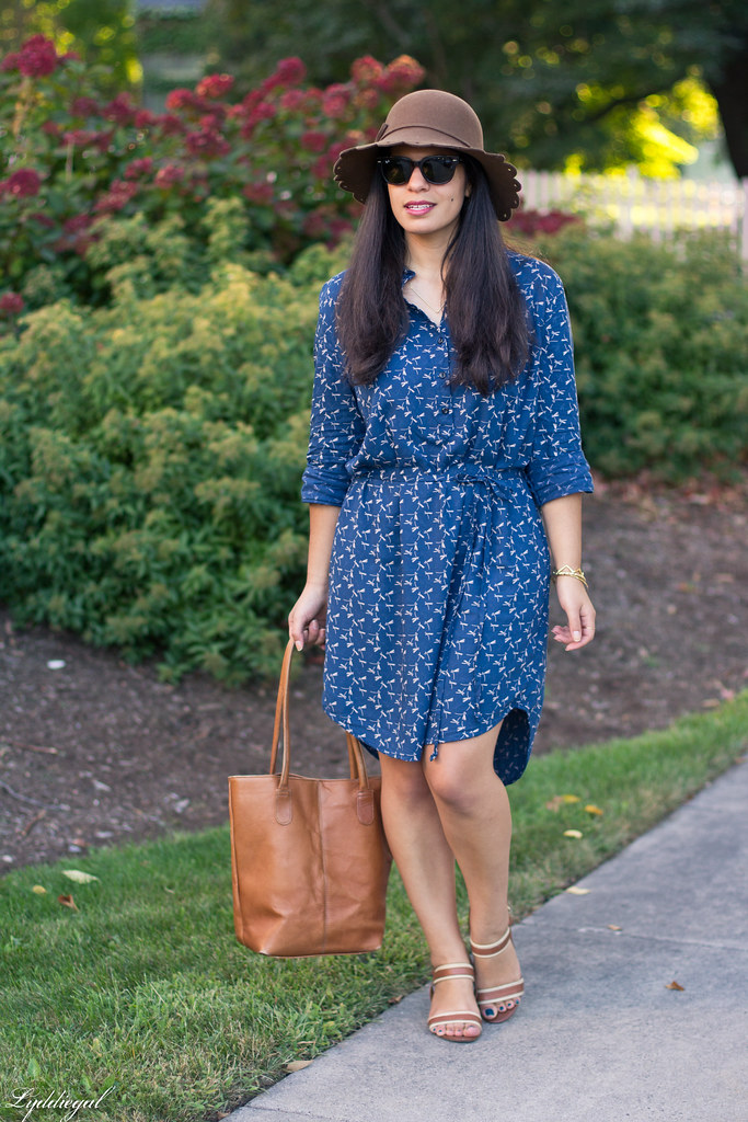 dragonfly print shirt dress, brown tote, scalloped brim hat-3.jpg
