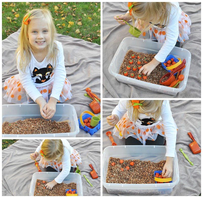 Edible Pumpkin Patch Sensory Bin Playing
