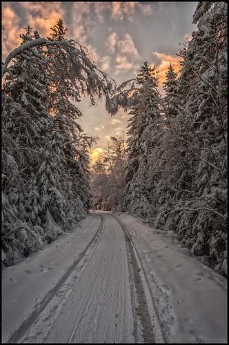 road trees winter sunset snow clouds forest vinter tracks skog snö träd väg solnedgång moln spår