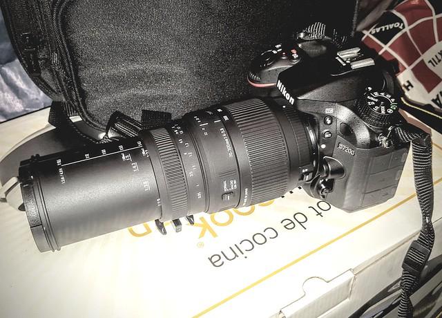 Nikon D7200 + Sigma 70-300