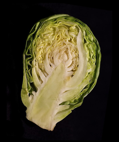 Bisected Brussels sprout right