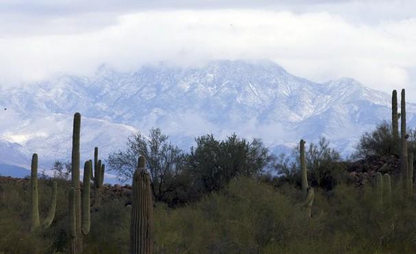 Mueren dos personas en desplome de ambulancia aérea en Arizona
