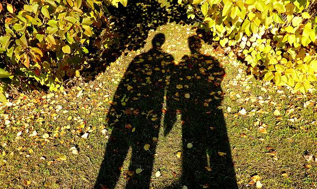 shadow / Explore # 145, Panasonic DMC-TZ41