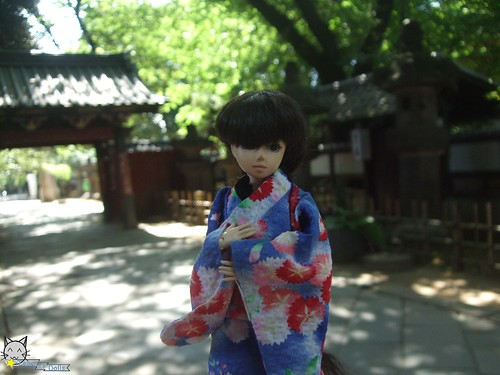001_TOD ueno001