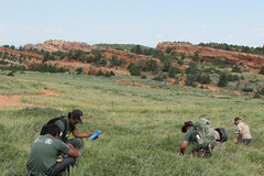 Restoration and Partnership with the BLM Wyoming Lander Field Office