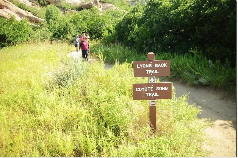 Lyon's Back Trail