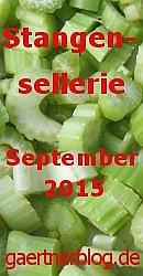 Garten-Koch-Event September 2015: Stangensellerie [30.09.2015]