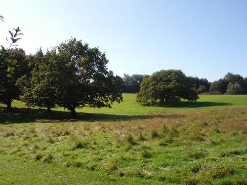 Westley Heights Park