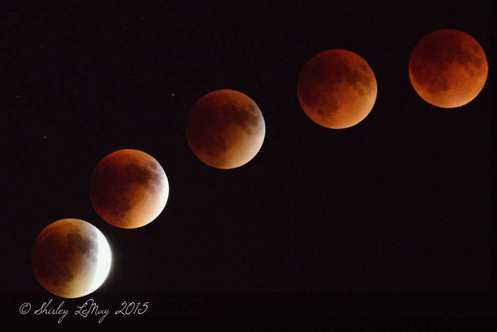 The BloodMoon Phases