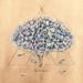 Hydrangea Alchemy_780 by Lena Limkina