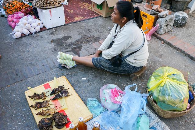 Street market in Luang Prabang, laos ルアンパバーンの青空市場