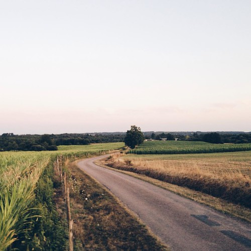 La France #dordogne #france #landscape #road #vsco #rural #nature #saintsaud