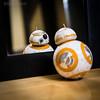 BB-8 Staring Contest.