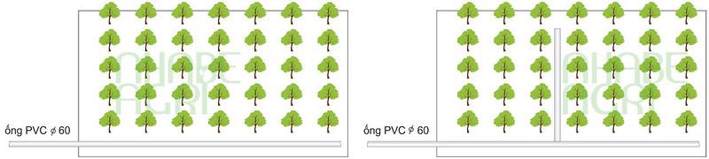 Ống PVC có thể đi sát biên hoặc đi giữa vườn để chia thành nhiều khu tưới