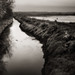 shallow inlet near the mississippi by jody9