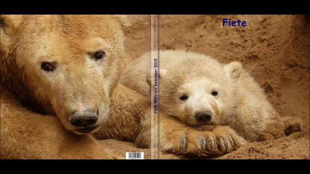 Fiete Fotobuch