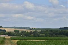 Au loin ,le château médiéval de Villebois-lavalette