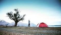 Seeping the beautiful landscape at @lakeohauquarters    @thenorthface @thenorthface_aunz  #adventuresports #nzadventurephotographer #nzadventurefilmmaker #pedropimentelvisuals #tree #mountains #relax #zenspirit #serenity #picoftheday #picoftheweek