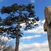 Mount Moriah Cemetery-IMG_4042ps by djhuisken3