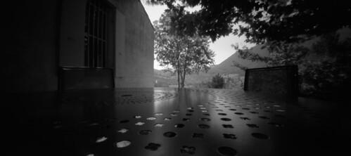 Jardin-Maryse Tavernier-Porcelaine-Dieulefit