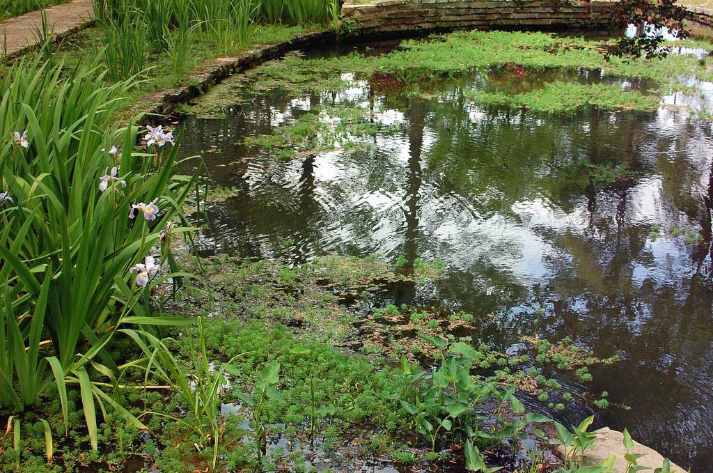 Hodges Gardens, Louisiana